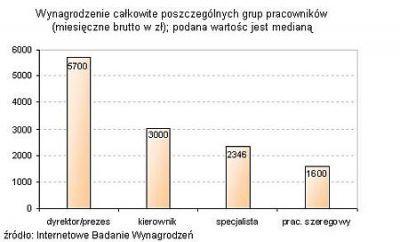 Ile zarabiali internauci w 2004 roku