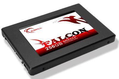 256 GB SSD od G.Skill