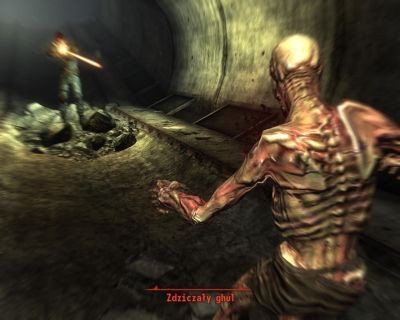 Screen z gry Fallout 3
