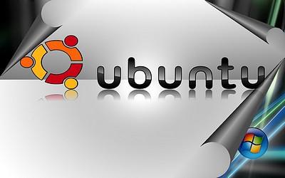 Windows i Linux w jednym stali domu