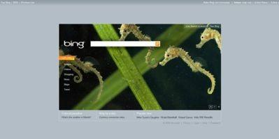 Bing.com - galeria 10 funkcji najnowszej wyszukiwarki Microsoftu