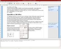 OpenOffice wygląda gorzej niż produkt Microsoftu, ale nie ustępuje mu pod względem funkcjonalności.