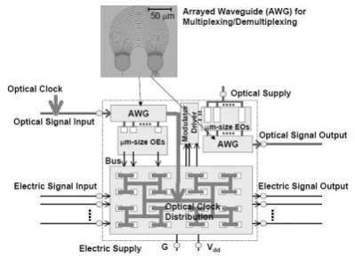 Schemat połączeń między elektroniką i optyką wg NEC-a (źródło: NEC)