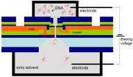 Schemat układu IBM