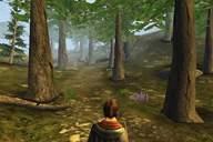 Ravensword: The Fallen King