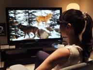Sony 3DTV