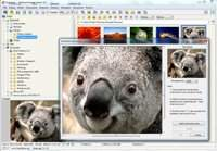 FastStone Image Viewer 4.1