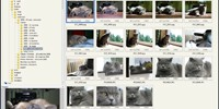 FastStone Image Viewer to darmowa przeglądarka zdjęć, która bardzo dobrze współpracuje z Windows 7.