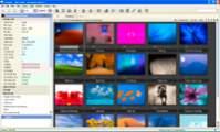 Katalogowanie zdjęć w Expression Media 2. Z lewej strony umieszczony został blok z dokładnym opisem fotografii.