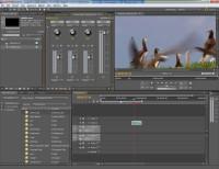 Pobierz za darmo trial Adobe Premiere Pro CS5 - profesjonalny program do edycji wideo