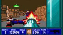 Wolfenstein 3D to jedna z wielu gier dostępnych w serwisach z grami abandonware.