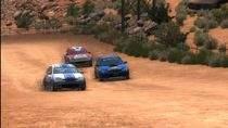Sega Rally Arcade Online