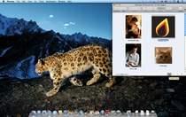 Śnieżna Pantera (Mac OS X 10.6) - najlepszy dotąd system operacyjny Apple.