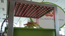 """komputerowa uprawa roślin"" Farmbox"
