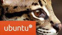 Ubuntu 11.10 Oniryczny Ocelot