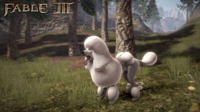 Fable 3 na PC - pierwsze DLC już w sprzedaży
