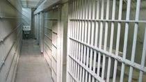 Szef Lulz Sec. znalazł się w areszcie