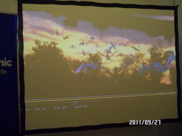 Avatar 3D na Panasonic PT-AT5000E
