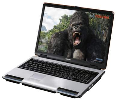 Toshiba Satellite P100