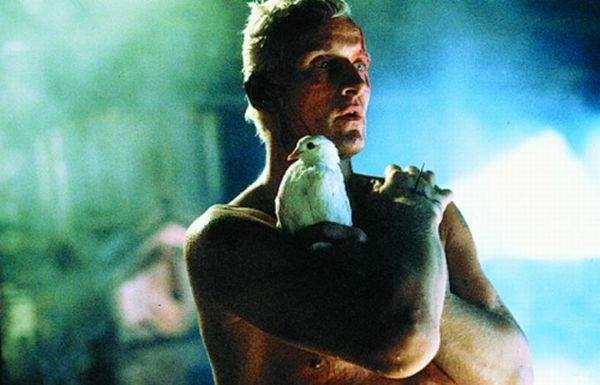 Nexus 6 w Blade Runner