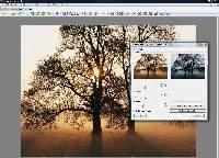 XnView – przeglądarka, menedżer plików graficznych i prosty edytor w jednym