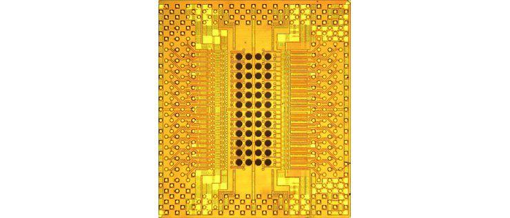 IBM Holey Optochip
