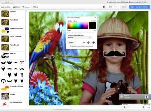 Picasa - funkcje, na które warto zwrócić uwagę