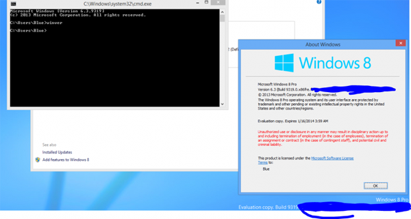 Windows Blue build 9319
