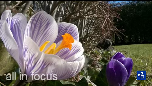 Aplikacja Nokia Refocus dostępna już dla wszystkich