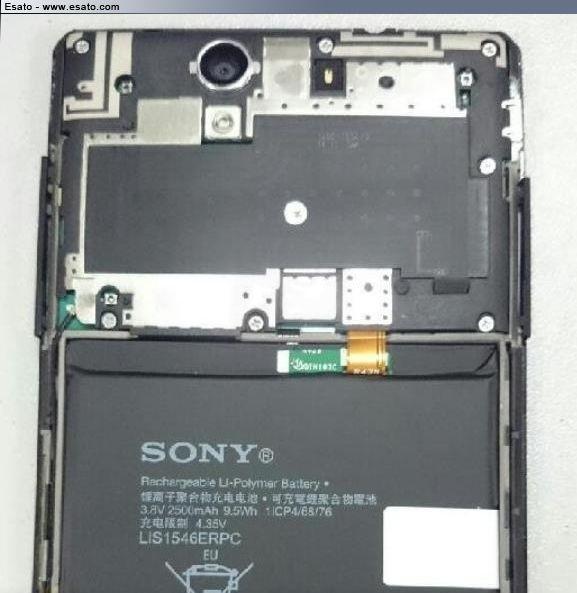 Sony Gina
