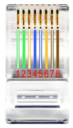 Schemat przedstawiający kolejność kolorowych żył we wtyczce zgodnej ze standardem T568A.