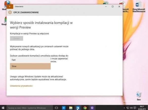 Zmiana na szybkie/wolne aktualizacje Windows 10 TP