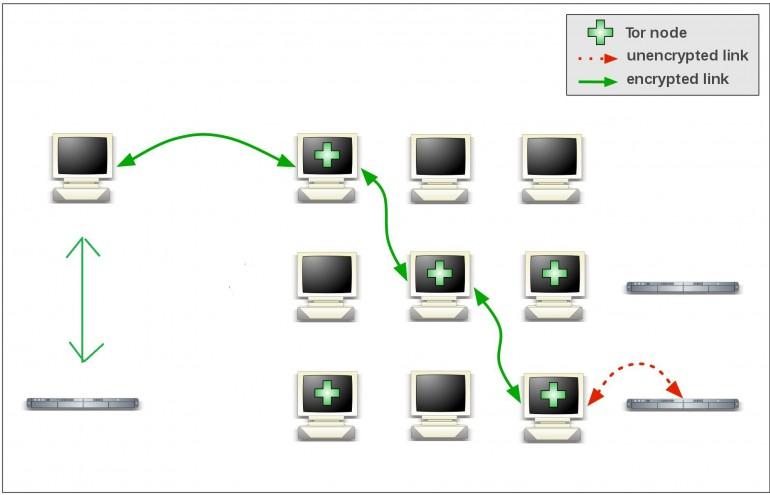 Czym jest przeglądarka Tor? W jaki sposób chroni prywatność?