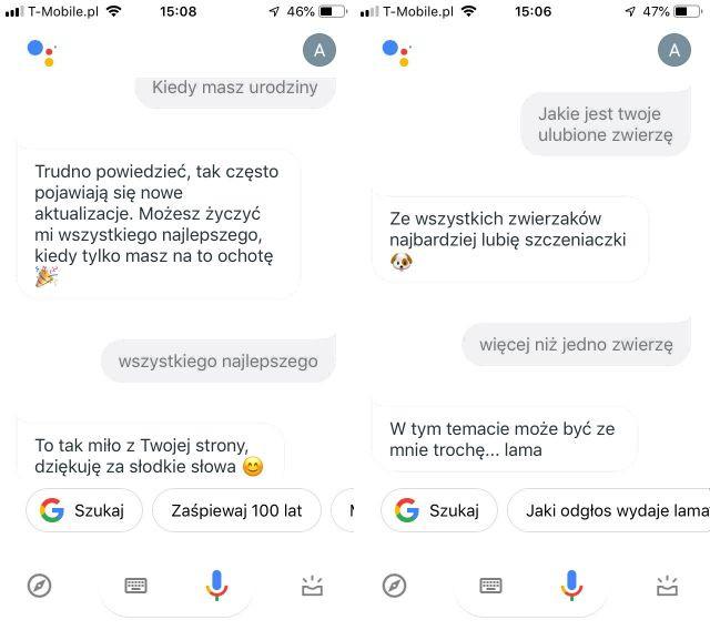 Asystent Google pomoże, podpowie… rozbawi? - zabawne komendy i podpowiedzi