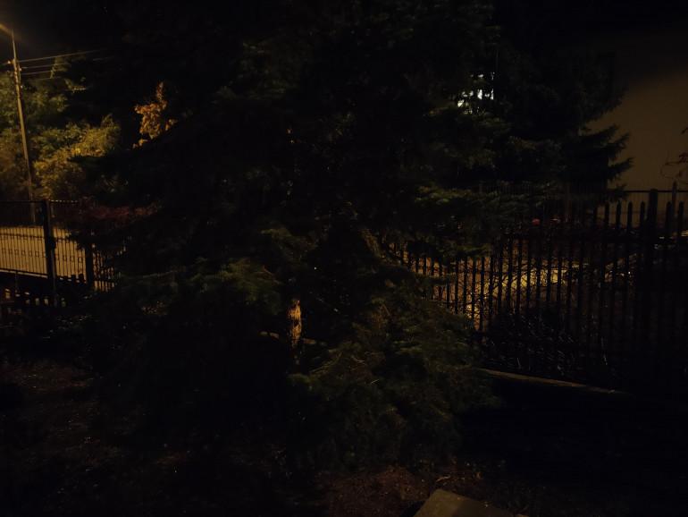 Zdjęcie w nocy bez użycia trybu nocnego