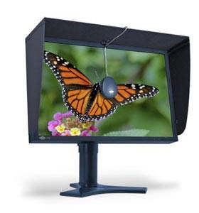 LaCie przedstawia profesjonalne 25,5 cala LCD