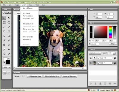 Photoshop w Sieci, czyli przegląd webowych edytorów graficznych