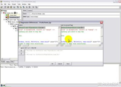 WebKing sprawdzi twoje aplikacje RIA