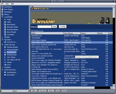 Niezabezpieczony Winamp oferuje kilkanaście kanałów pornograficznych