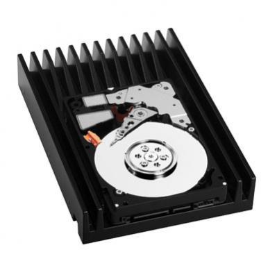 VelociRaptor 300 GB