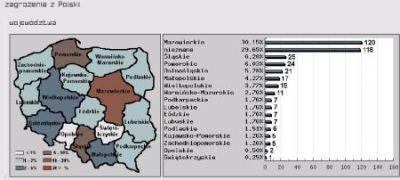 Przykład statystyk, prezentowanych przez system ARAKIS