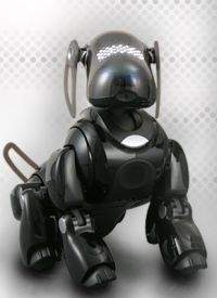 Aibo Entertainment Robot ERS-7M2